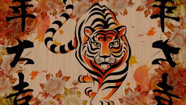 tiger, chinese, striped