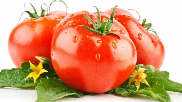 tomatoes, drops, white background