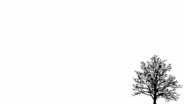 tree, branches, vector