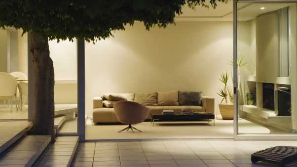 tree, couch, design