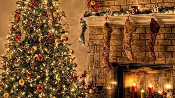 tree, fire, christmas