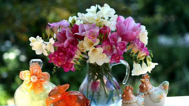 tulips, freesia, flowers