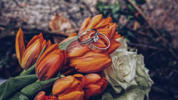 tulips, rings, flowers