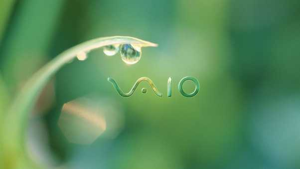 vaio, firm, drops