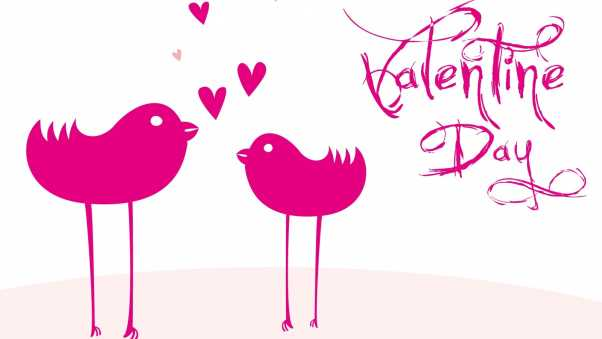 valentines day, inscription, birdies