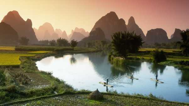vietnam, crops, fields