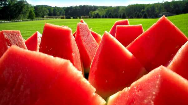 water-melon, segments, berry