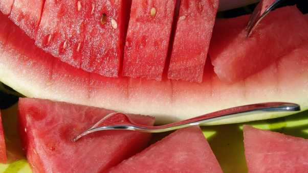 water-melon, slices, plug