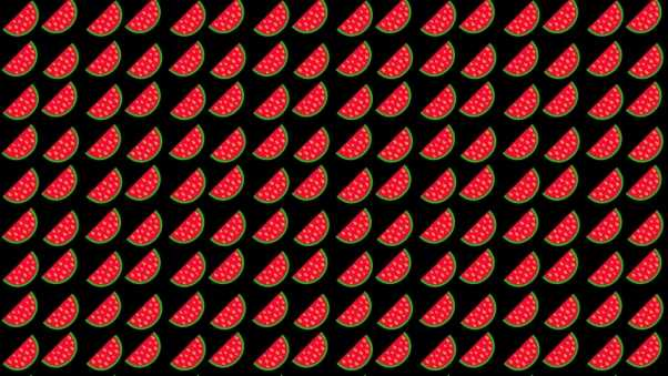 watermelon, background, picture