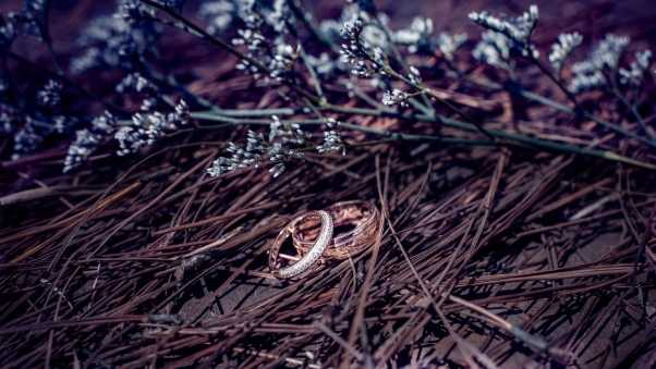 wedding rings, branches, flowers