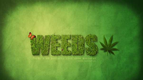 weeds, mary-louise parker, hunter parrish
