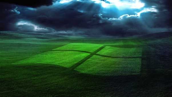 windows, field, grass