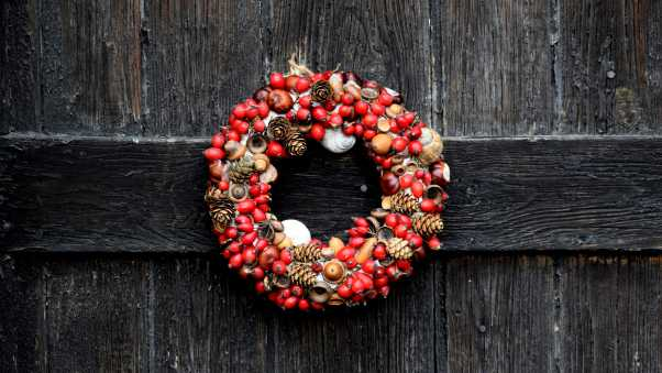 wreath, christmas, dogrose