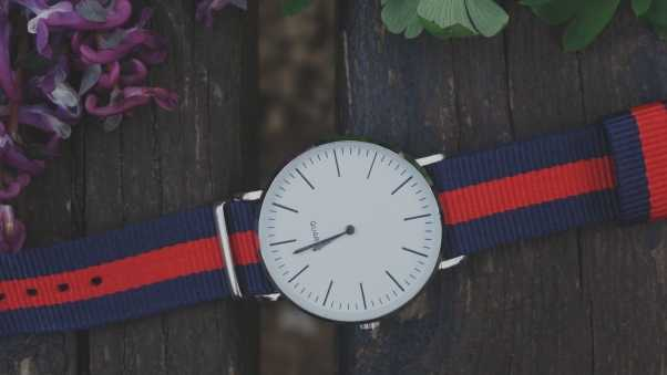 wristwatch, strap, stylish