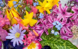 Spring Flowers From the Garden